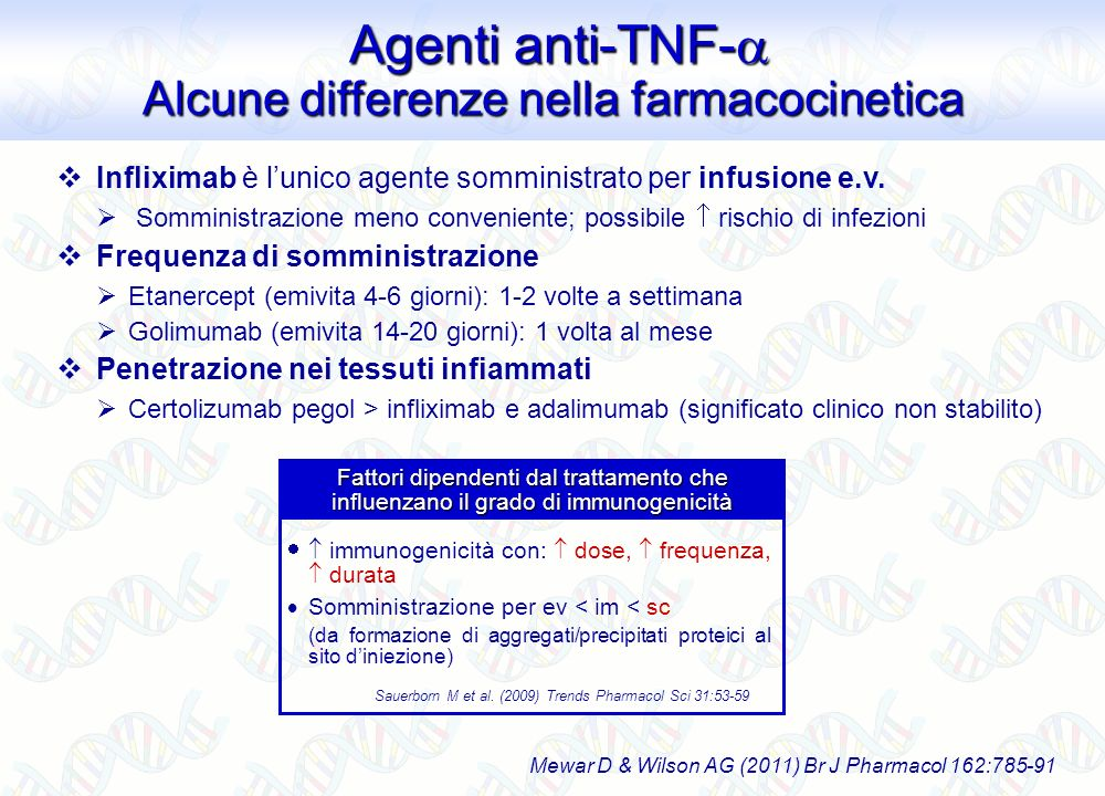 Agenti anti-TNF- Alcune differenze nella farmacocinetica