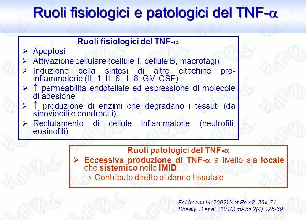 Ruoli fisiologici del TNF- Ruoli patologici del TNF-