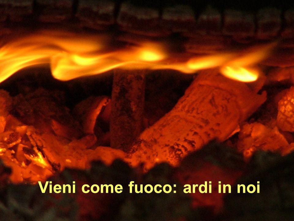 Vieni come fuoco: ardi in noi