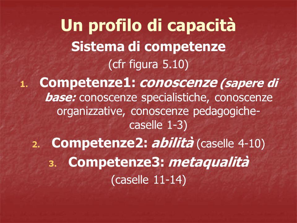 Un profilo di capacità Sistema di competenze