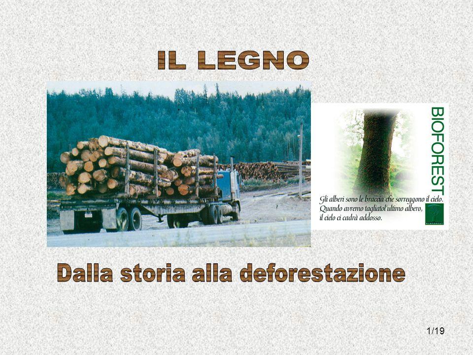 Dalla storia alla deforestazione