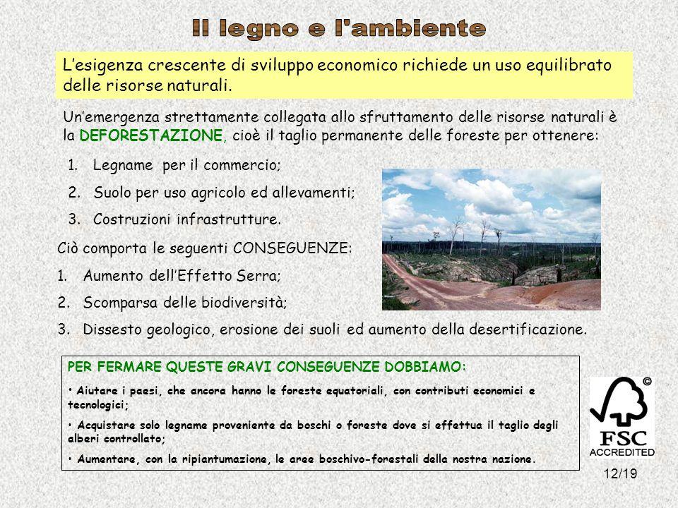 Il legno e l ambiente L'esigenza crescente di sviluppo economico richiede un uso equilibrato delle risorse naturali.
