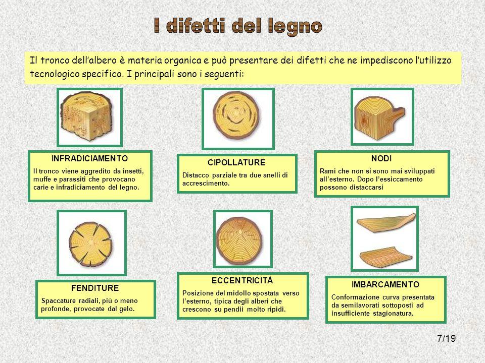 I difetti del legno Il tronco dell'albero è materia organica e può presentare dei difetti che ne impediscono l'utilizzo.