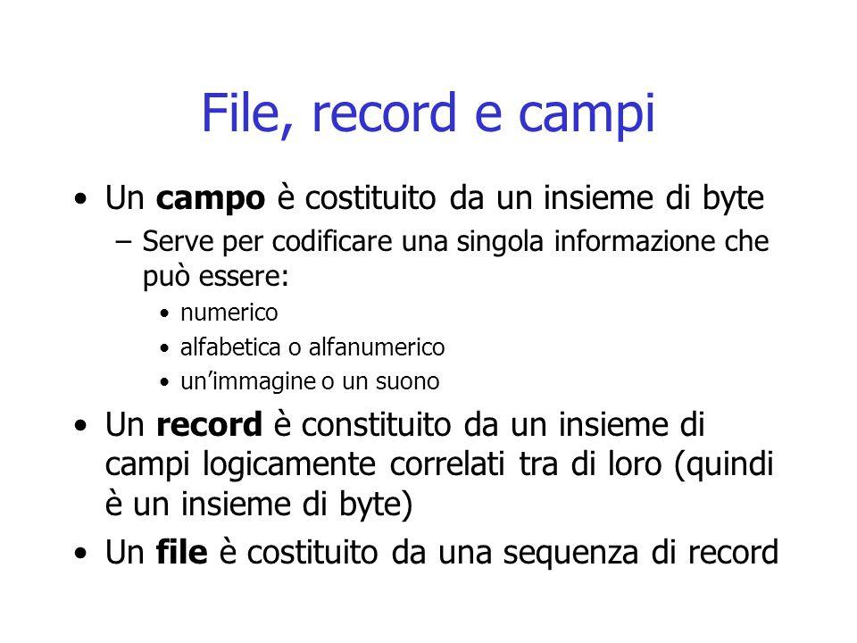 File, record e campi Un campo è costituito da un insieme di byte