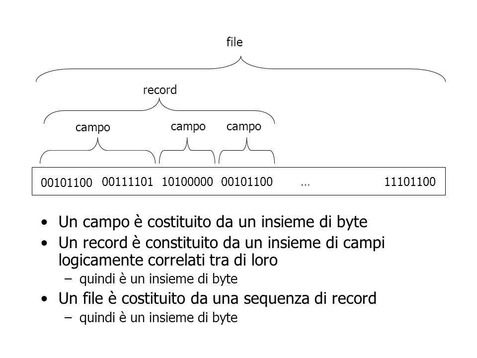 Un campo è costituito da un insieme di byte