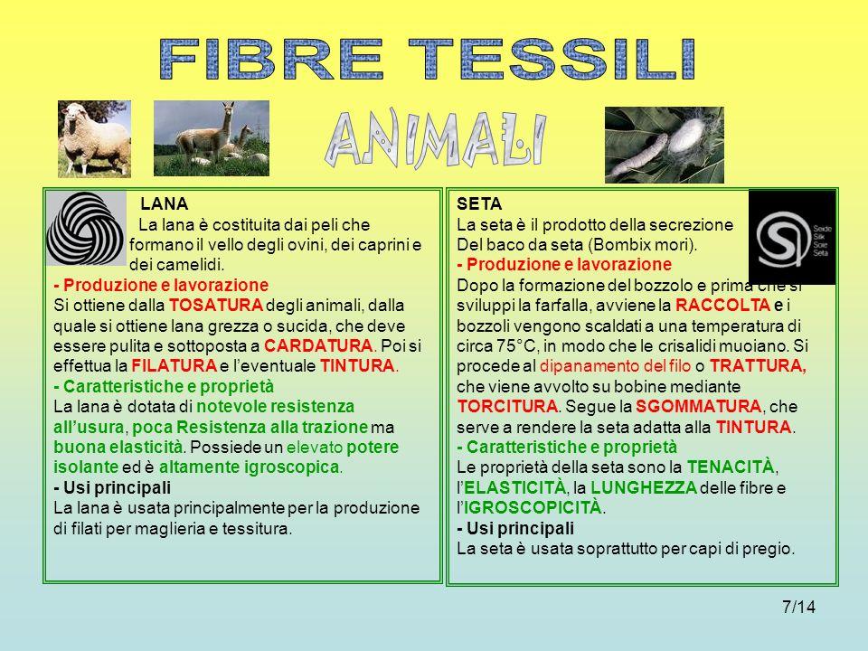 FIBRE TESSILI ANIMALI LANA
