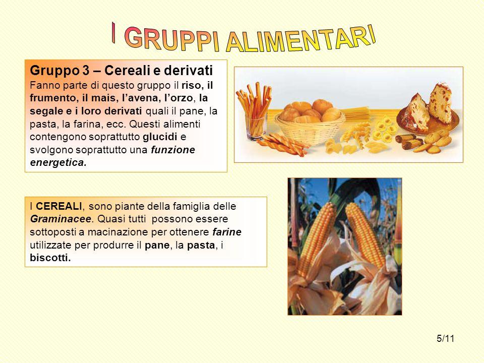 I GRUPPI ALIMENTARI Gruppo 3 – Cereali e derivati