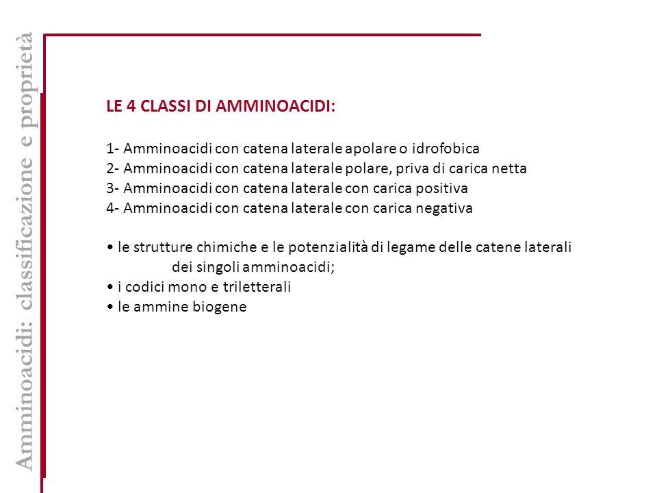 Amminoacidi: classificazione e proprietà