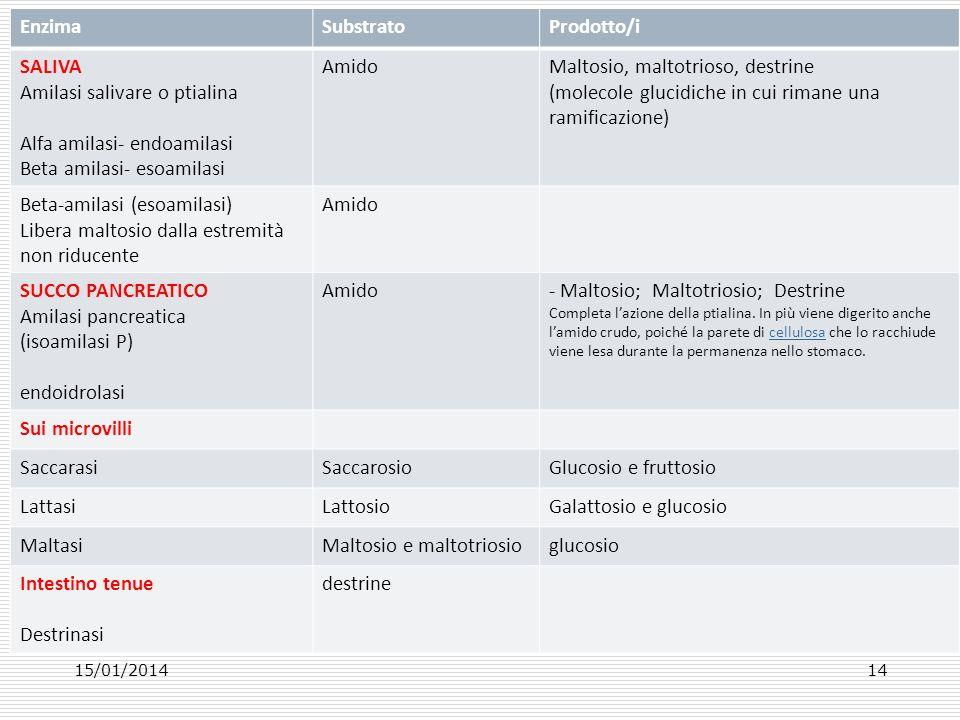 Amilasi salivare o ptialina Alfa amilasi- endoamilasi