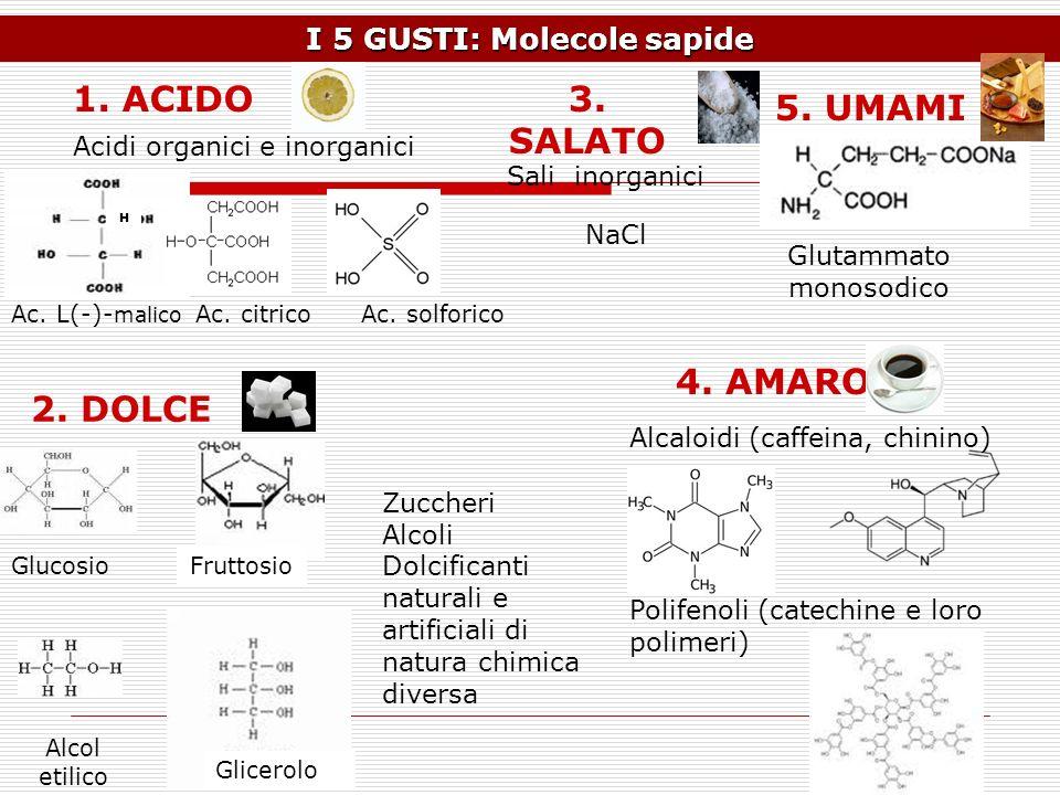 I 5 GUSTI: Molecole sapide