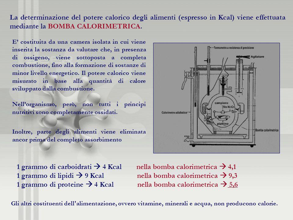 1 grammo di carboidrati  4 Kcal nella bomba calorimetrica  4,1