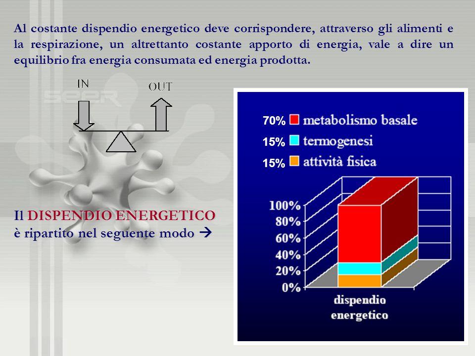Il DISPENDIO ENERGETICO è ripartito nel seguente modo 