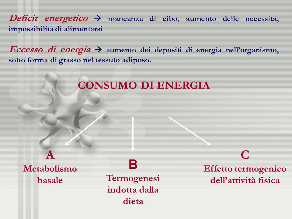 Deficit energetico  mancanza di cibo, aumento delle necessità, impossibilità di alimentarsi