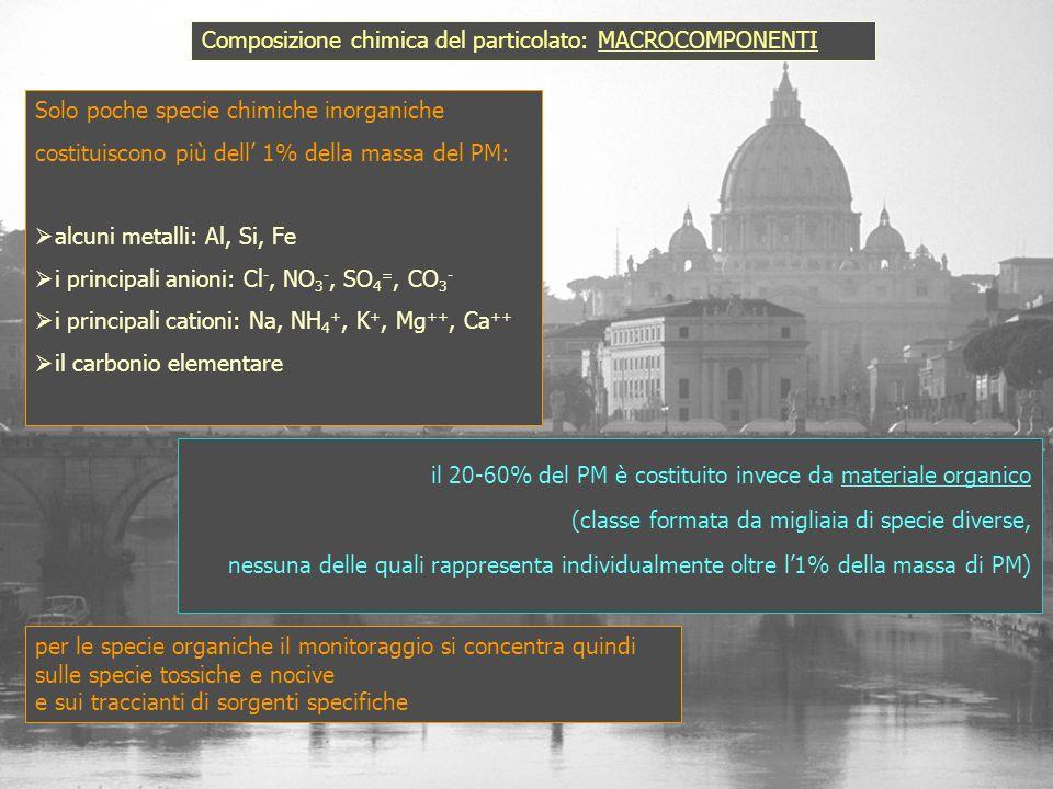 Composizione chimica del particolato: MACROCOMPONENTI