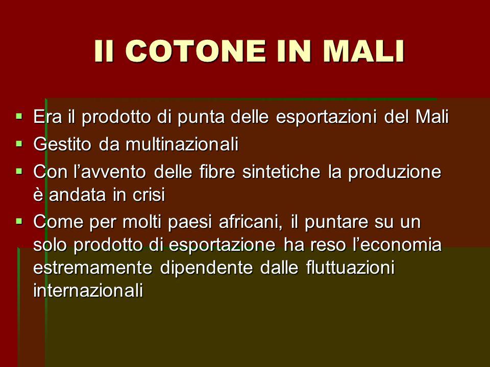 Il COTONE IN MALI Era il prodotto di punta delle esportazioni del Mali