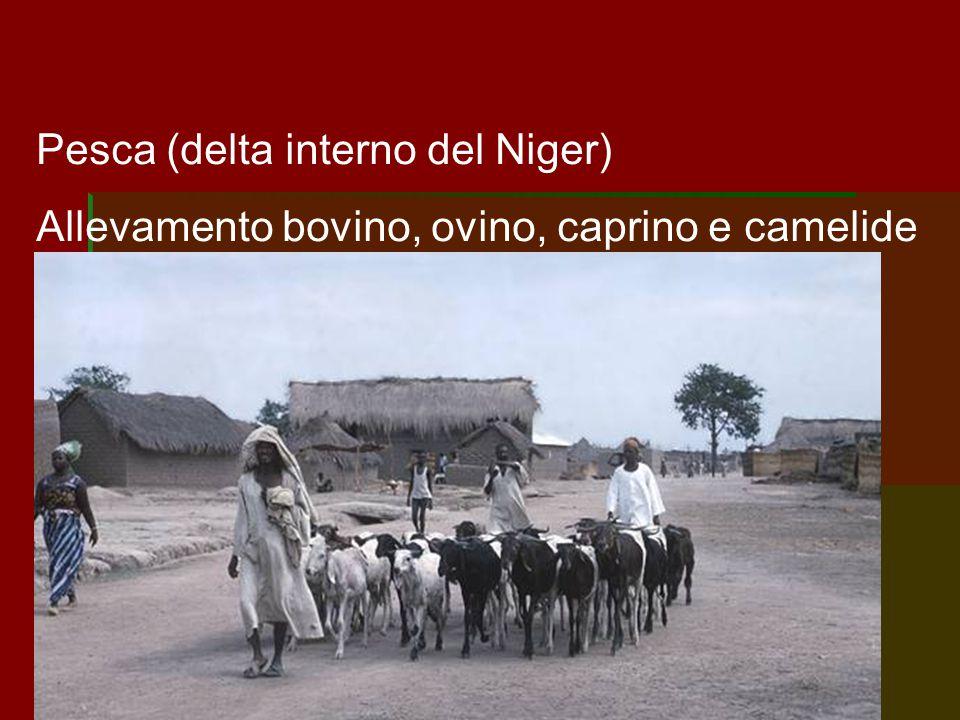 Pesca (delta interno del Niger)