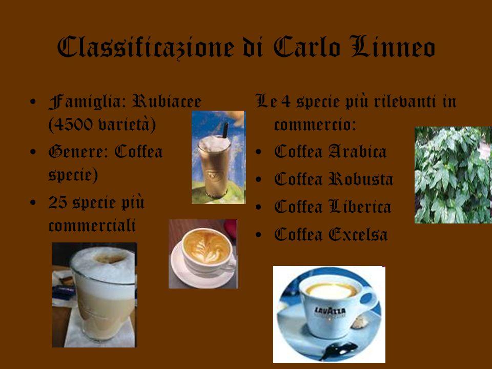 Classificazione di Carlo Linneo