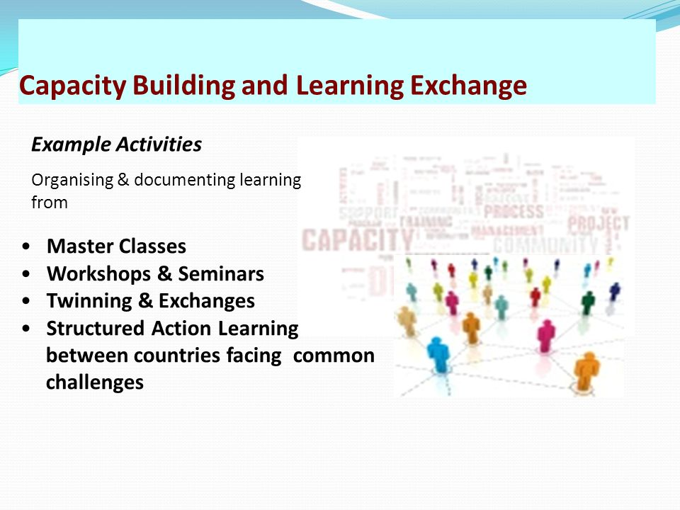 Capacity Building and Learning Exchange