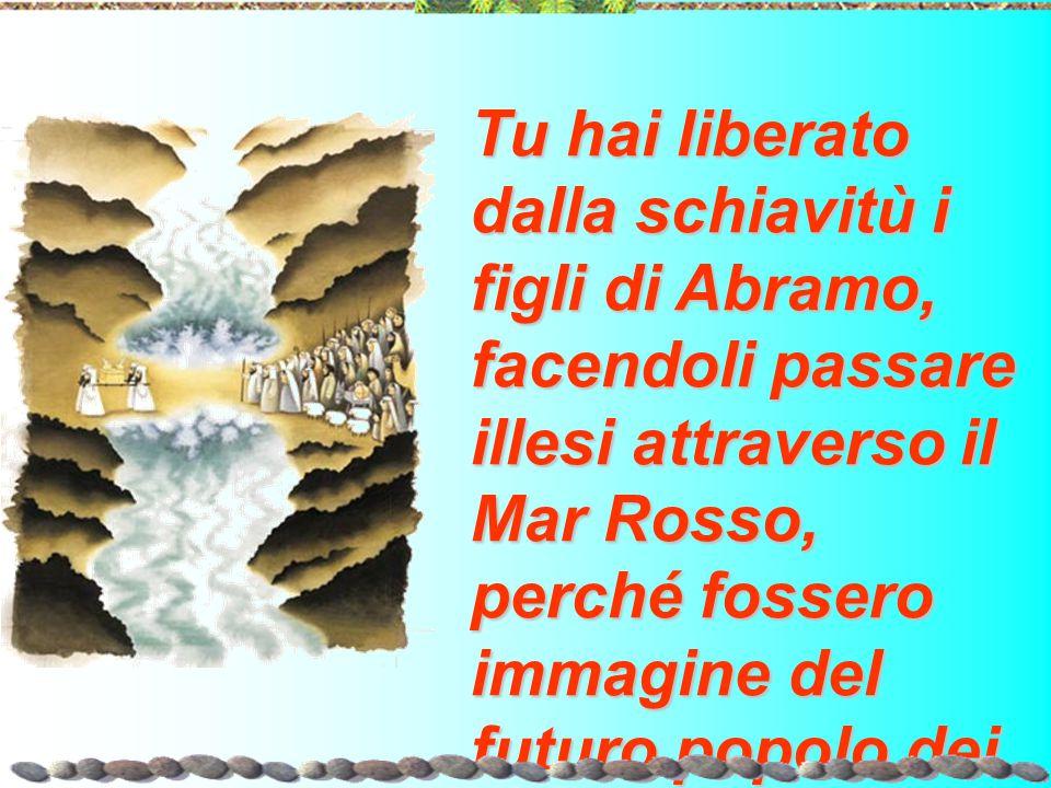 Tu hai liberato dalla schiavitù i figli di Abramo, facendoli passare illesi attraverso il Mar Rosso, perché fossero immagine del futuro popolo dei battezzati