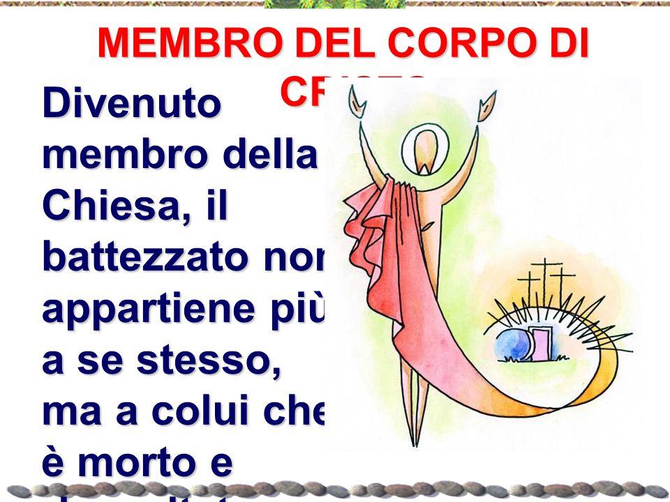 MEMBRO DEL CORPO DI CRISTO