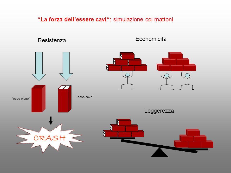 CRASH La forza dell'essere cavi : simulazione coi mattoni Economicità