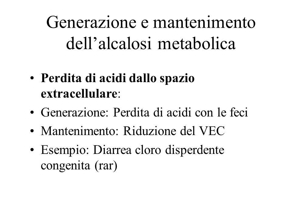 Generazione e mantenimento dell'alcalosi metabolica