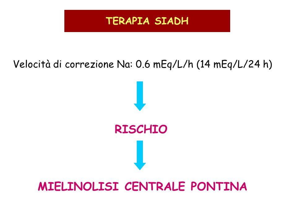 MIELINOLISI CENTRALE PONTINA