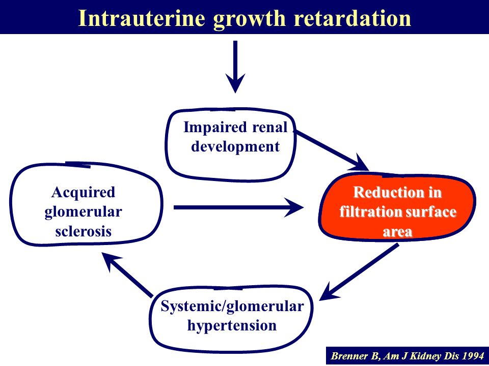 Intrauterine growth retardation