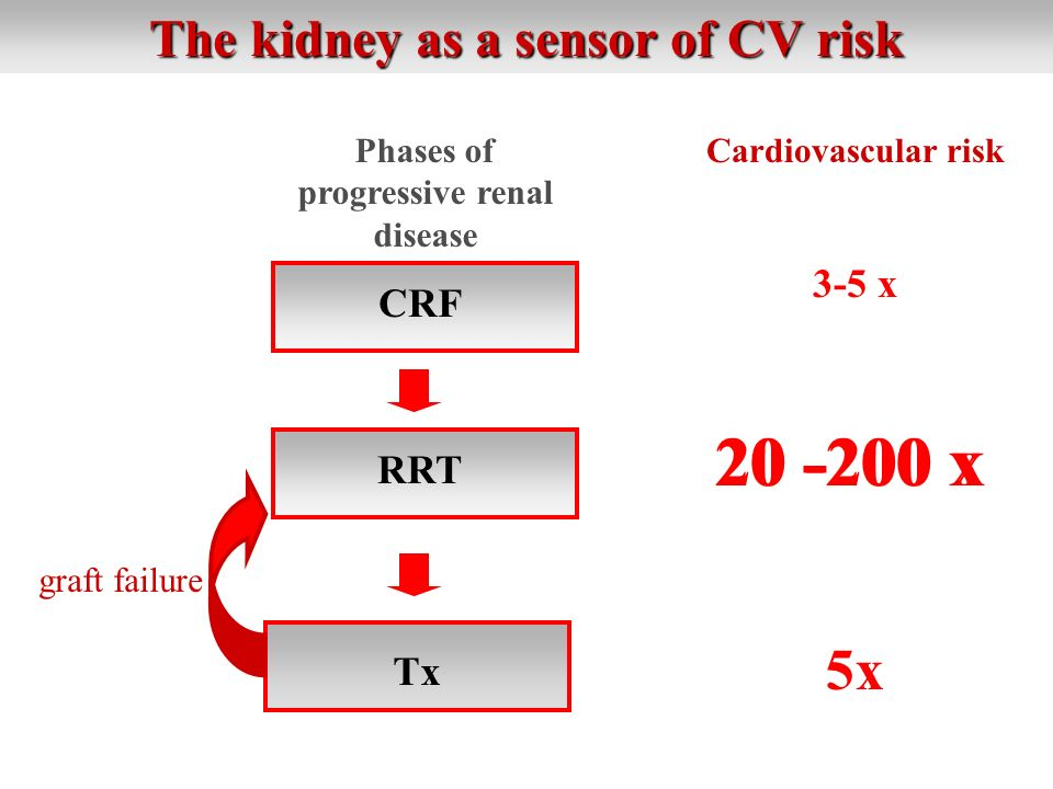 The kidney as a sensor of CV risk Phases of progressive renal disease