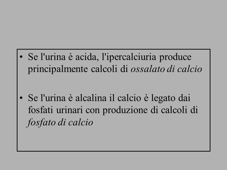 Se l urina è acida, l ipercalciuria produce principalmente calcoli di ossalato di calcio