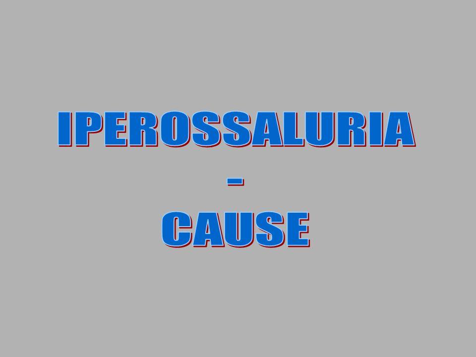 IPEROSSALURIA - CAUSE