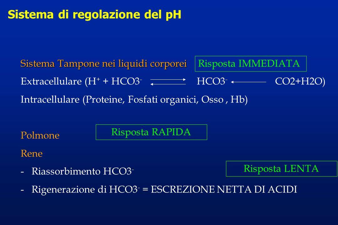 Sistema di regolazione del pH