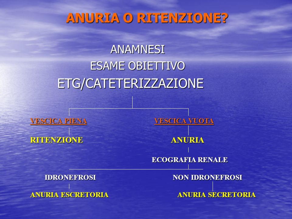 ETG/CATETERIZZAZIONE