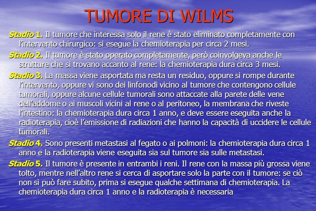 TUMORE DI WILMS