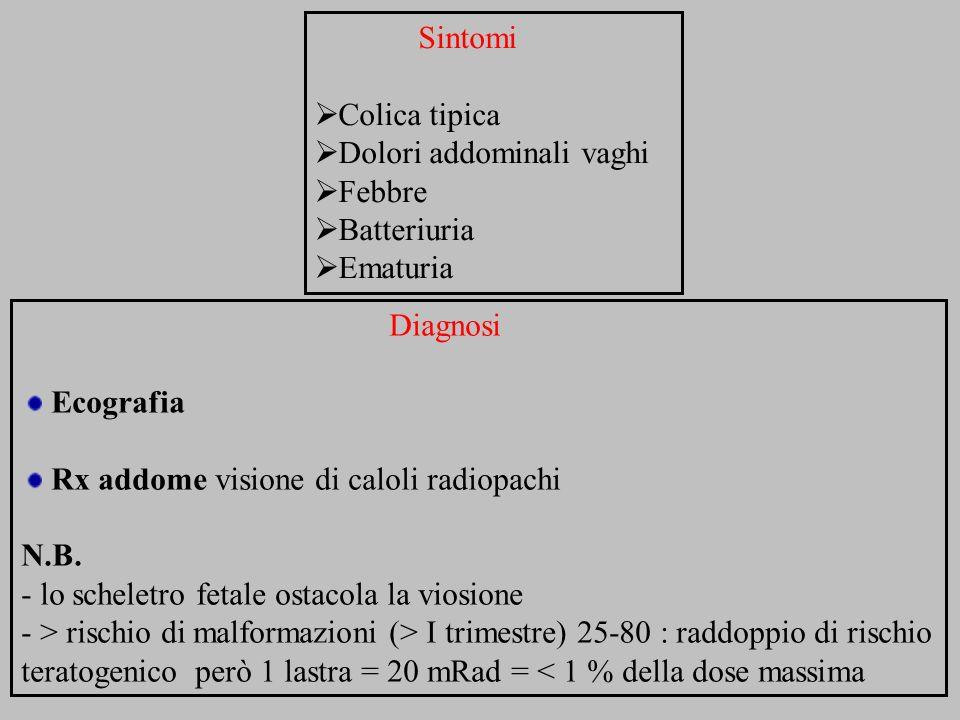 Sintomi Colica tipica. Dolori addominali vaghi. Febbre. Batteriuria. Ematuria. Diagnosi. Ecografia.