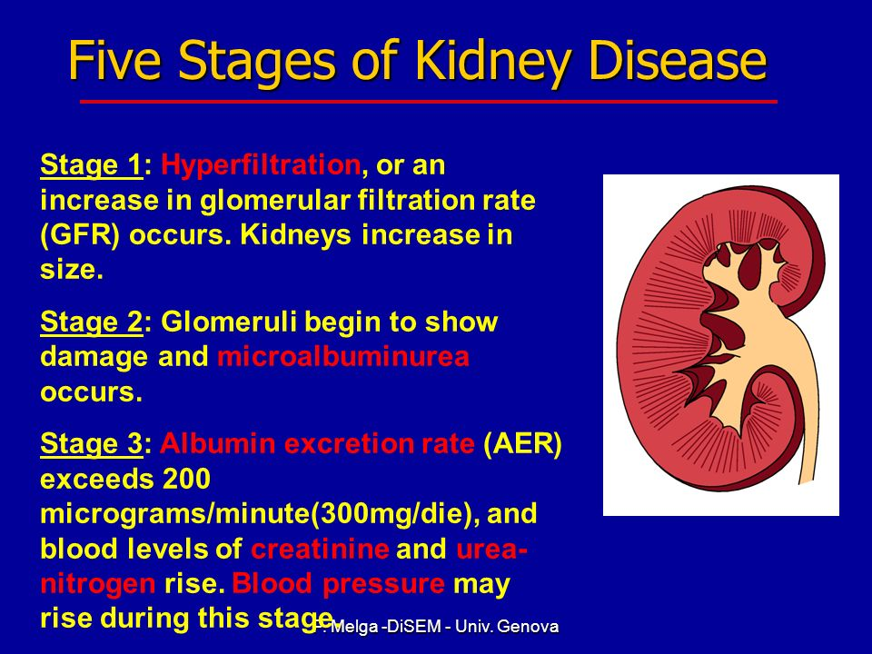 Five Stages of Kidney Disease