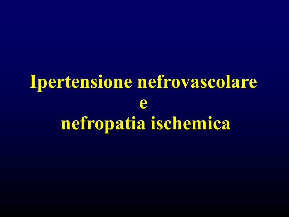 Ipertensione nefrovascolare