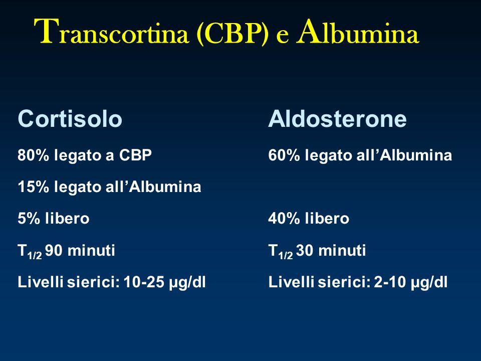 Transcortina (CBP) e Albumina