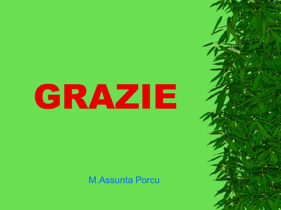 GRAZIE M.Assunta Porcu