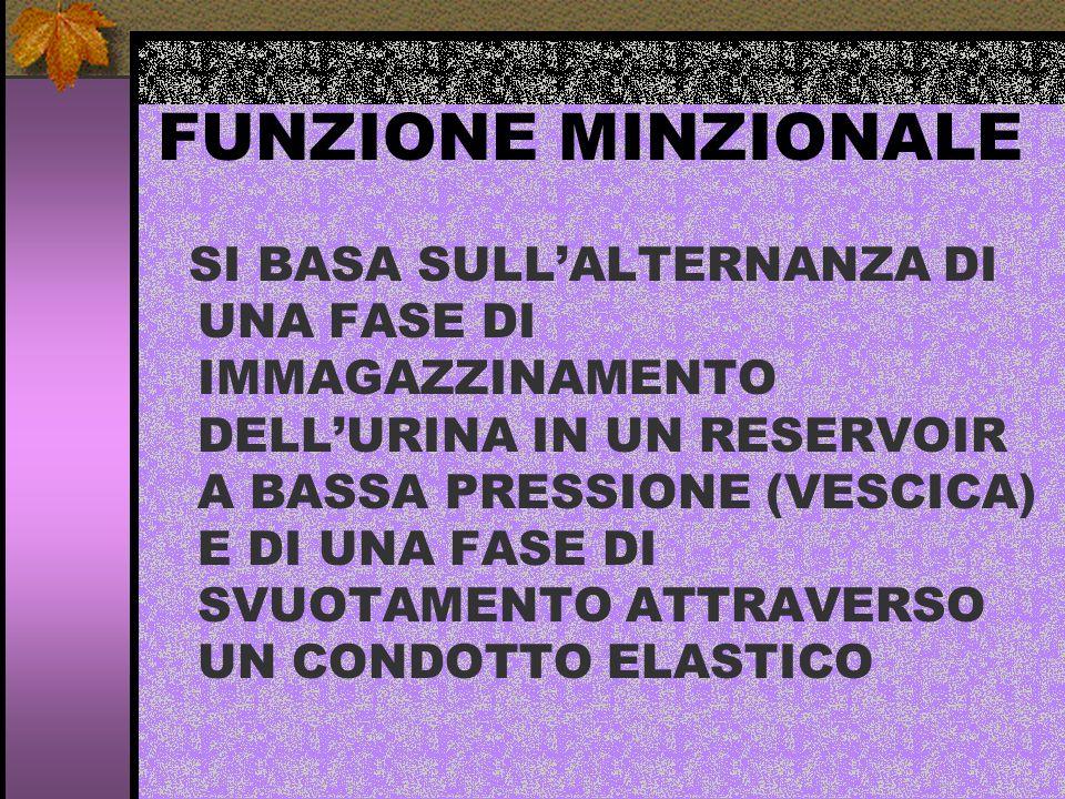 FUNZIONE MINZIONALE