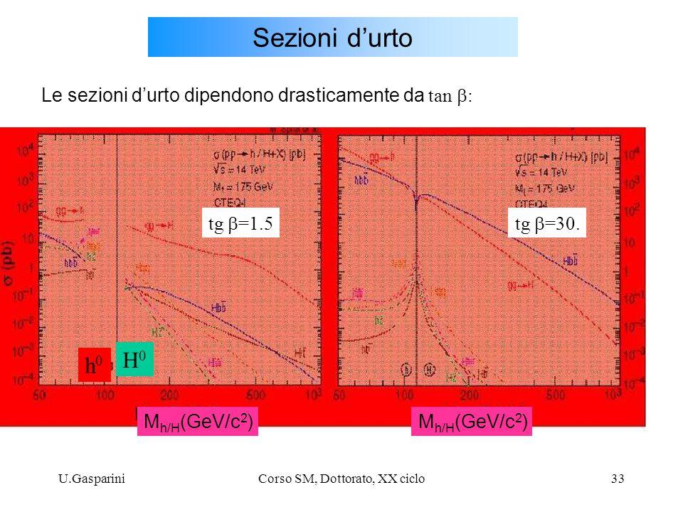 Corso SM, Dottorato, XX ciclo