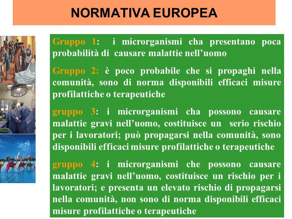 NORMATIVA EUROPEA Gruppo 1: i microrganismi cha presentano poca probabilità di causare malattie nell'uomo.