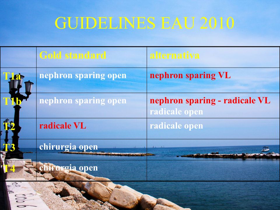GUIDELINES EAU 2010 Gold standard alternativa T1a T1b T2 T3 T4