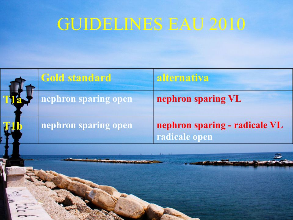 GUIDELINES EAU 2010 Gold standard alternativa T1a T1b