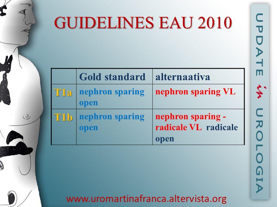 GUIDELINES EAU 2010 Gold standard alternaativa T1a T1b