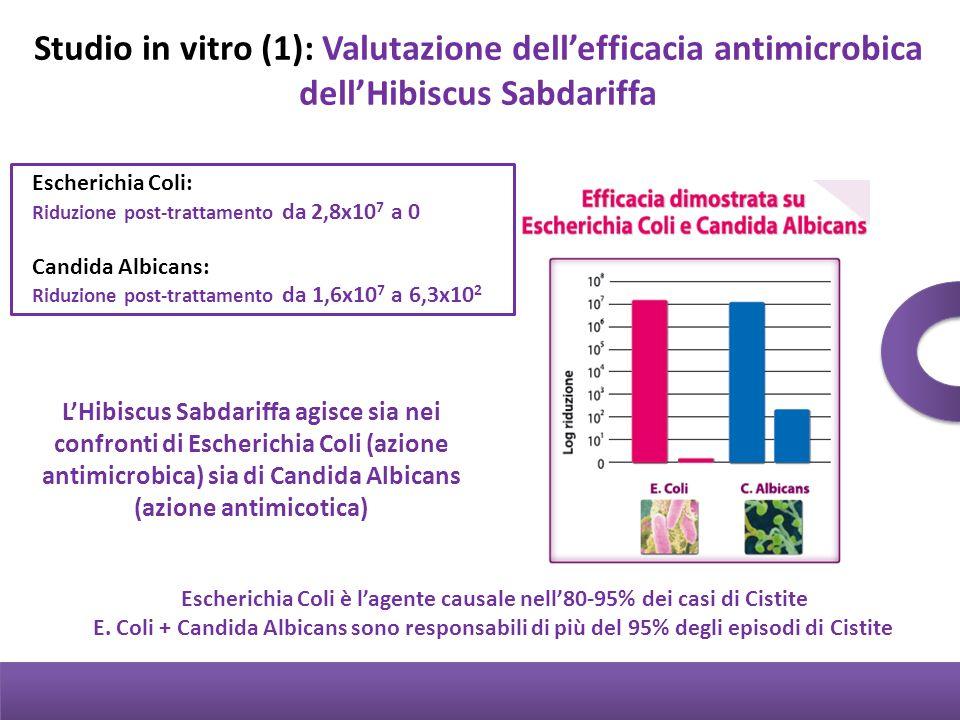 Escherichia Coli è l'agente causale nell'80-95% dei casi di Cistite