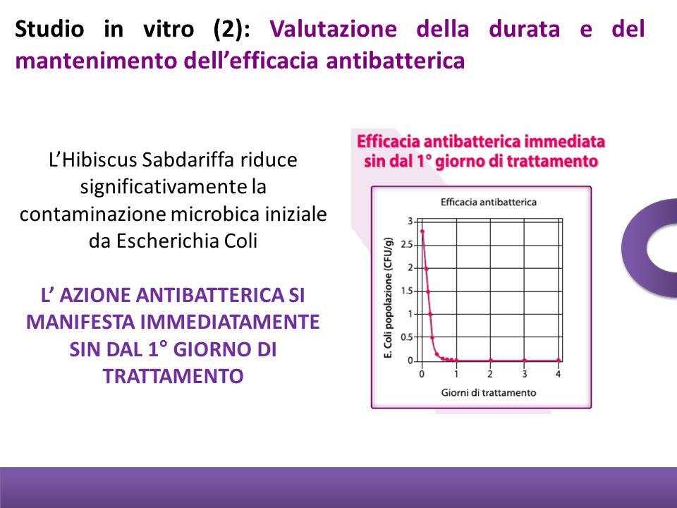 Studio in vitro (2): Valutazione della durata e del mantenimento dell'efficacia antibatterica