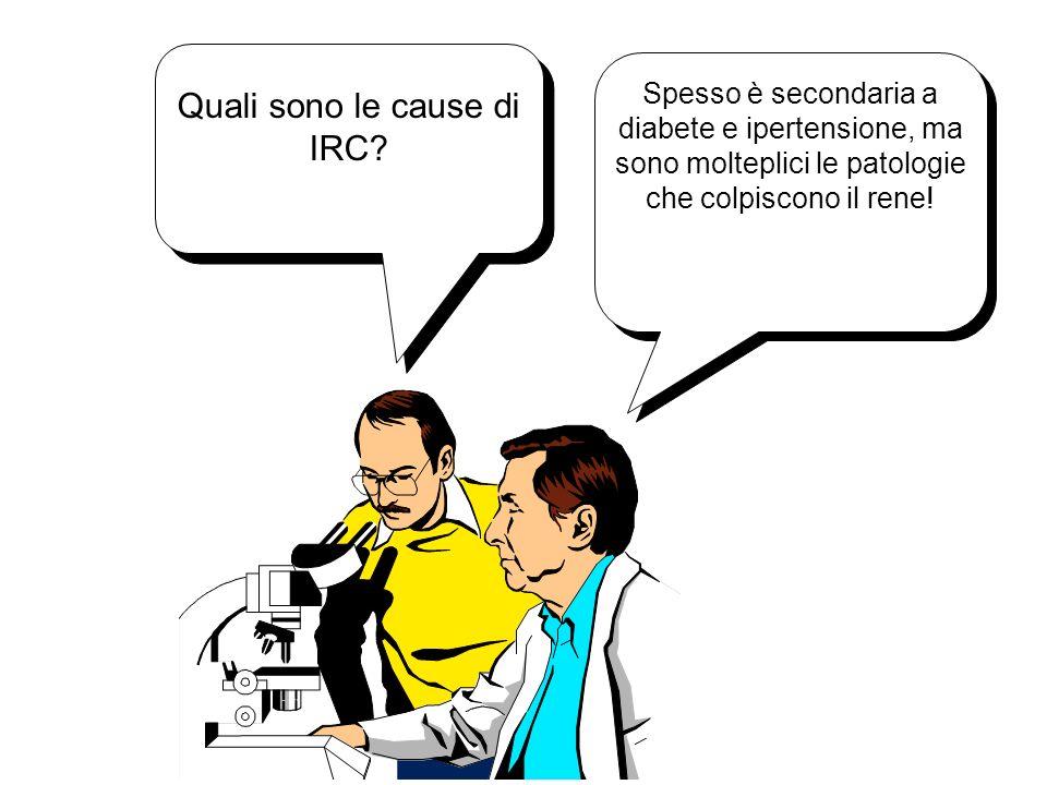 Quali sono le cause di IRC