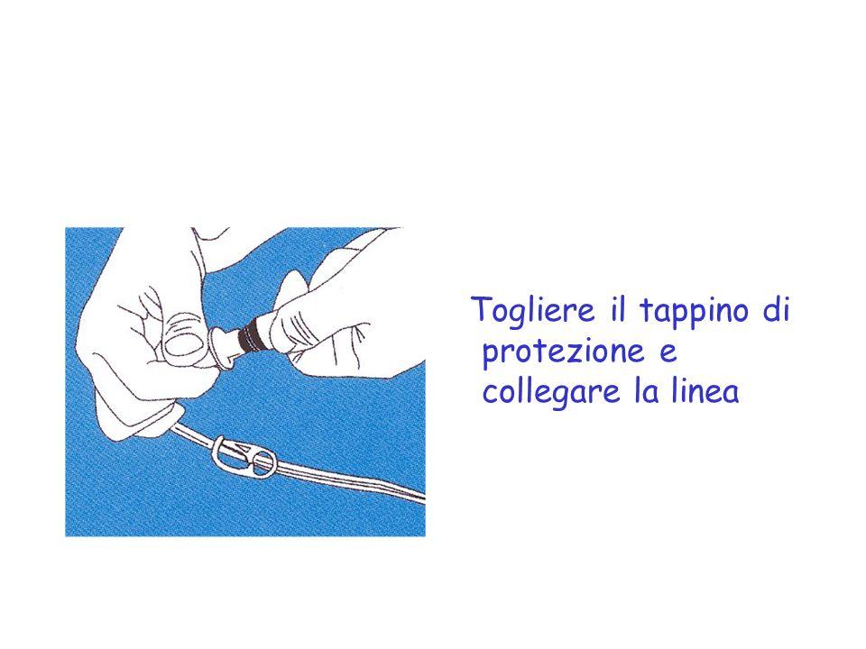 Togliere il tappino di protezione e collegare la linea