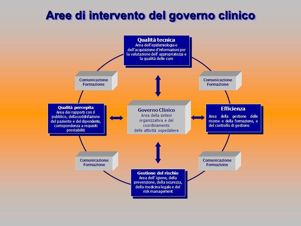 Aree di intervento del governo clinico